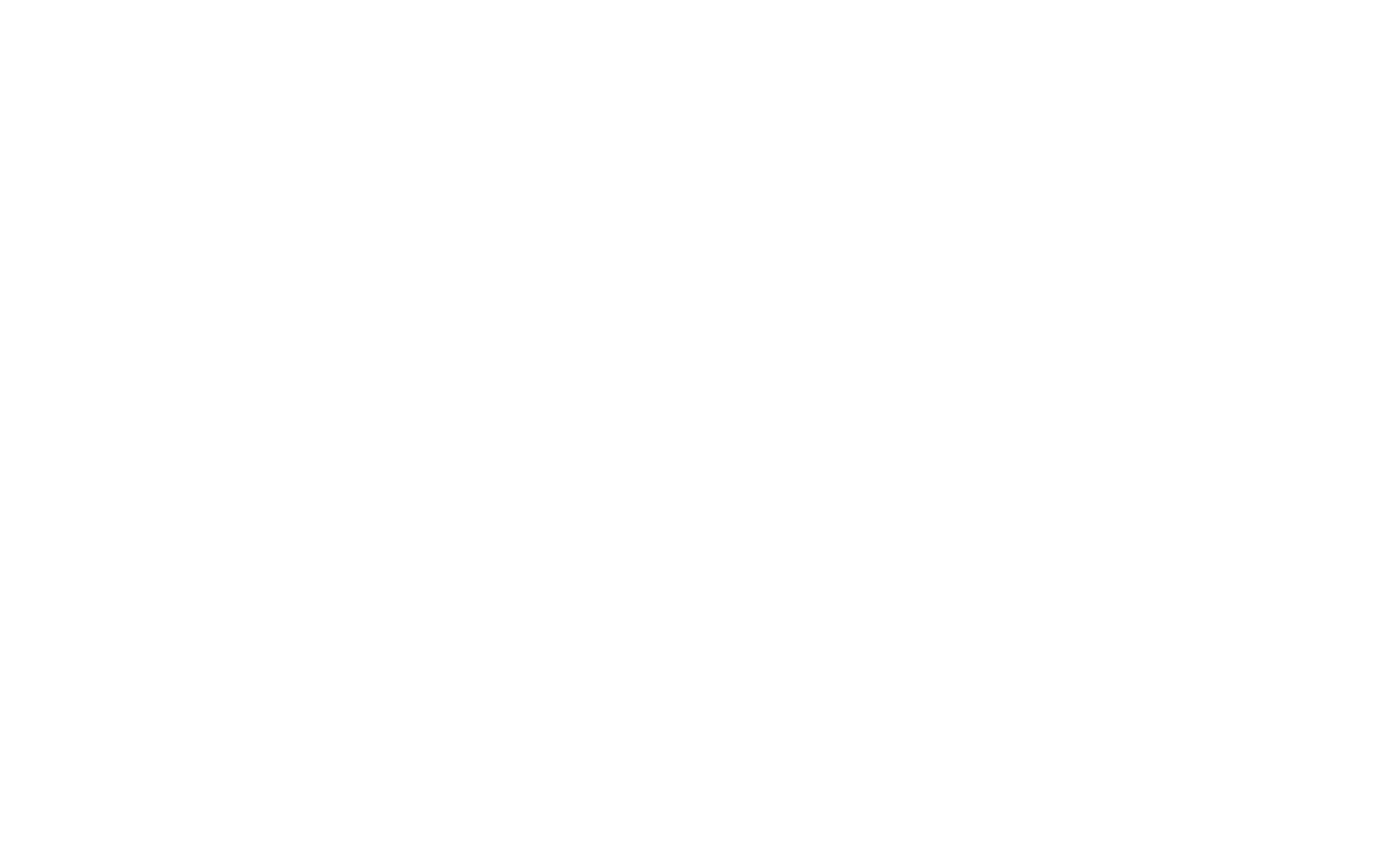 Valle logo in white